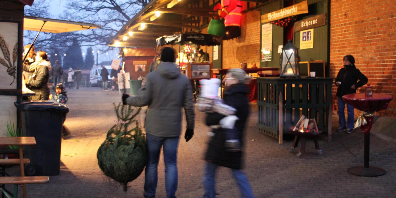 Tannenbaum Selber Schlagen Bremen.Weihnachtsbaum Verkauf Tannenbaum Selber Schlagen In Schonung